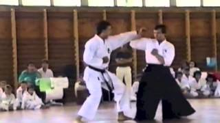 Wim Massee 7th Dan Karate Wado Ryu