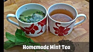 How to Make Mint Tea Using Fresh OR Dried Mint Leaves (Slideshow)