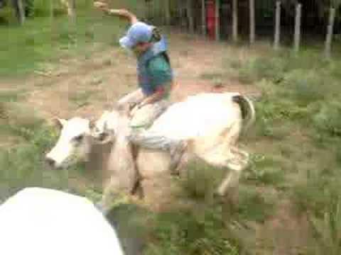 Darlei vs Paratudo rodeio em touros