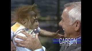 Baby Gorilla from San Diego Zoo: Orangutans on Johnny Carson