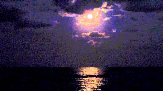 A peaceful video. Natural sights and sounds of the beach at night.