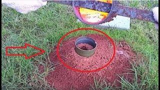 شاهد ماذا يحدث عند سكب الالمنيوم السائل في بيت النمل