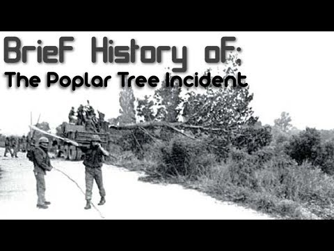 A Brief History of: The Poplar Tree Incident