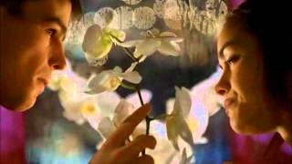 WHAT IS THIS SONG CALLED? flower scene off 40 days and 40 nights