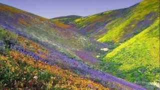 The Beautiful Landscapes of Iran (HD1080p)