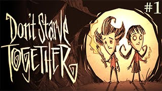 Don't Starve Together - Episode 1: I LOVE THIS GAME