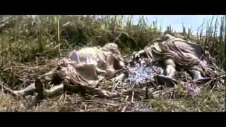 Africa Addio  Subtitulado Español )   YouTube