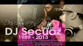 DJ SECUAZ MIX 2013