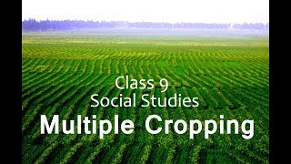 Class 9 Economics The Story of Village Palampur - Multiple Cropping