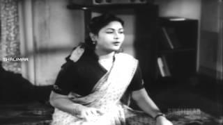 Raaga Sudhaa Rasa Video Song || Missamma Movie || NTR, ANR, SVR, Savitri, Jamuna