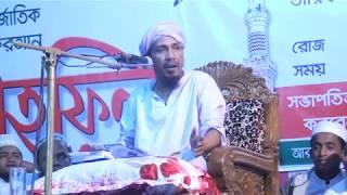 নোয়াখালী হুজুর রফিক উল্লাহ আফসারি নতুন বাংলা ওয়াজ  ২০১৭, পার্ট-০৪ | Islamic Life ☑