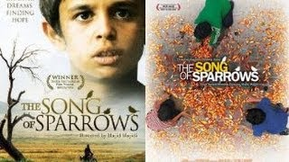 Film Iran The Song Of Sparrows 2008 Teks Indonesia