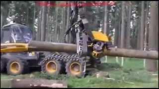 Robot Penebang Pohon