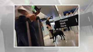 Breaking News - Customs begins interrogation of officers
