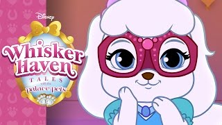 Whisker Haven Masquerade | Whisker Haven Tales with the Palace Pets | Disney Junior
