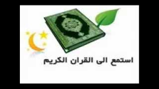آخر سورة الفتح محمود حسانين الكلحي