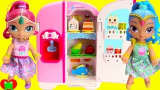 Shimmer and Shine Refrigerator and Grocery Shopping Learn Foods