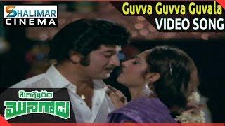 Siripuram Monagadu Movie    Guvva Guvva Guvala Video Song    Krishna, Jayaprada    Shalimarcinema