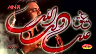 Imran Mehdi 2015 - 2016  Title Nauha (01) With Legend Nauha Khuwan Syed Irfan Haider