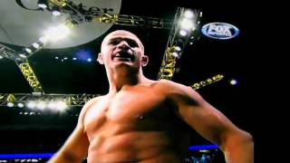 Cain Velasquez vs Junior Dos Santos. UFC 2011