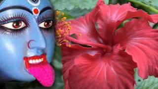 images Amay Ektuku Jayga Shyama Sangeet By Manna Day
