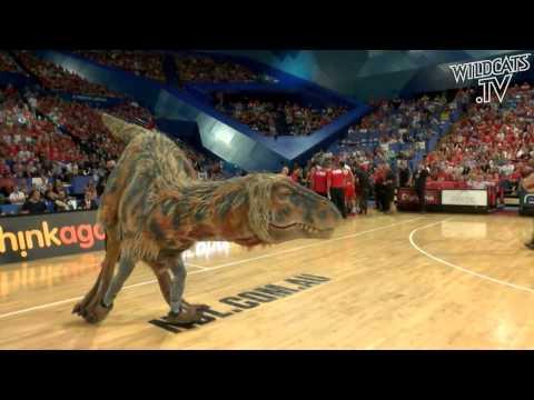 Perth Wildcats Dinosaur invades Perth Arena