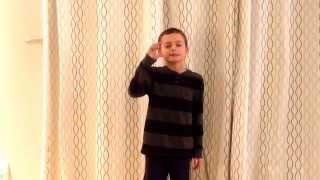 Grade 4 Oral Presentation - exemplar