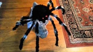 spirit halloween jumping spider