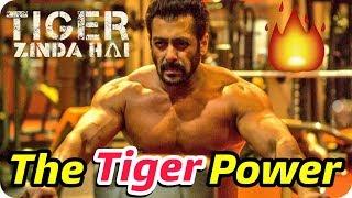 Tiger Zinda Hai || Tiger Salman Khan || Pawer Man Body Amazing Hot Look