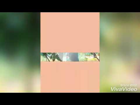 Xxx Mp4 My Album Ajay1 3gp Sex