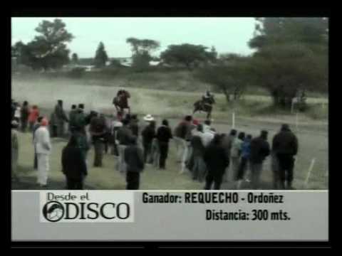 PARTE 2 Programa Desde el Disco en carreras cuadreras en San Cristóbal