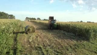 Baling corn