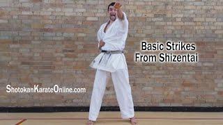 Shotokan Karate Techniques From Shizentai