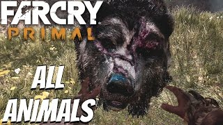 Far Cry Primal - All Tameable Animals / All Beasts Tamed