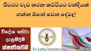 පිටරට වැඩ කරන කට්ටියට වන්දියක් ගන්න ඕනේ වෙන දේවල්  - how to get claim of insurance from SLBFE