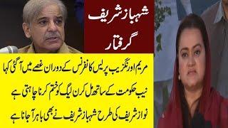 Maryam Aurangzeb Reaction On Shahbaz Sharif Arrested - Pakistan News Tv