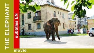 The Elephant. Russian Movie. Adventure. Comedy. English Subtitles. The Rock Films. StarMediaEN