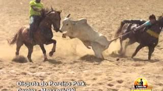 DISPUTA DA VAQUEJADA DE ABRIL DO PORCINO PARK CENTER 2016