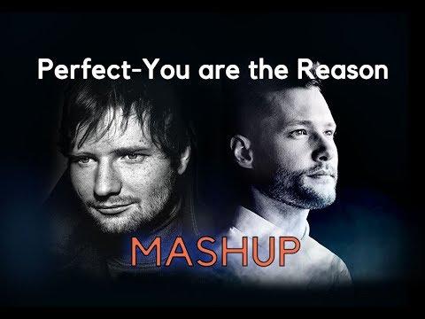 Ed Sheeran-PerfectCalum Scott-You are the Reason-MASHUP