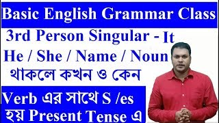 Basic English grammar for English speaking and Writing - কখন ও কেন Verb এর সাথে S বা es যোগ করতে হয়