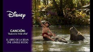 El Libro de la Selva (The Jungle Book) | Busca lo más vital
