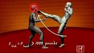 Human Weapon KungFu & Taekwondo