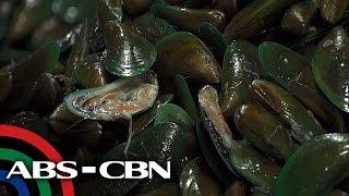 Salamat Dok: Sustansya ng mga Shellfish