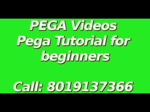 Pega 7 BPM Training - Call 8019137366