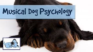 Musical Dog Psychology - 1 Hour of Relaxing Pet Music.