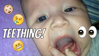 Firsts: Teething @ Three Months Old | LifeTagsLulu