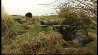 SAS - Survival Secrets: Behind Enemy Lines Scenario 1 [Full Episode]