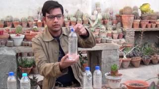 Making Liquid Fertilizer NPK and DAP