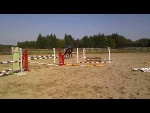 Xxx Mp4 Macedończyk Xx 4yo Horse For Sale 3gp Sex