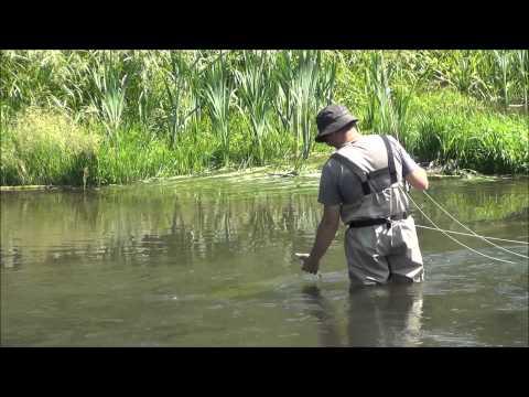рыбалка в мае на верхнем дону